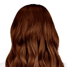 Cinnamon Hair Color Chart Firenze Brown Mahogany Brown Hair Color With Hints Of Gold