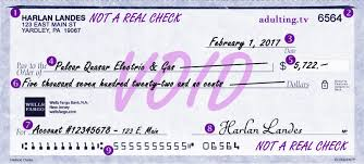 the art of writing a check adulting take a look at this sample and the explanations below someone seems to have a sizable power service bill from the pulsar quasar electric gas company