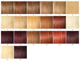 Kanekalon Braiding Hair Color Chart Color Chart