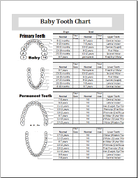 Baby Growth Months Online Charts Collection