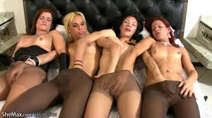 Free Pussy Sex shemale Porn Tube