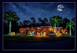 gallery of lighting and fans port charlotte. image may contain: tree, outdoor and nature gallery of lighting fans port charlotte