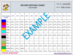 Whelping Chart Puppies In Bloom Color Coordinated Breeder Record Keeping Charts