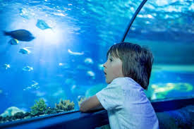 will my fish tank fall through the floor