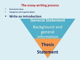 essay writing process 3 the essay writing process
