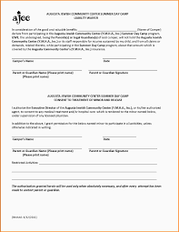 Liability Waiver Form Template 24 Liability Waiver Template Mac Resume Template 6