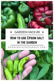 garden 8 how to use epsom salt in the garden