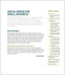 Social Media Proposal Template Social Media Marketing Proposal Template Example Pdf