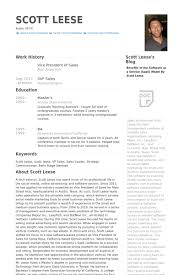 Vice President Of Sales Resume Samples Visualcv Resume Samples