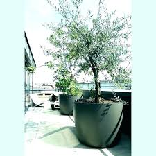 large planting pots outdoor planter ideas tree box for planters on patios beautiful of patio awesome