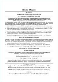 Resume Writers Chicago From Executive Resume Writing Service Free