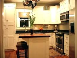 small kitchen renovation ideas tiny remodel remodeling best galley pictures k