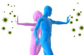 Resultado de imagen de Cómo fortalecer el sistema inmunológico