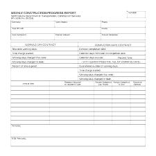 Task Report Template Daily Status Sample