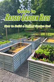 guide to raised garden beds how to