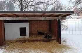 winterized dog house