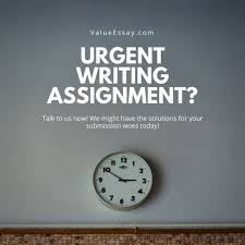 urgent hour essay assignment service services others on carousell urgent 24 hour essay assignment service