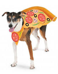 Details About Pet Costume Dog Cat Pizza Slice Costume