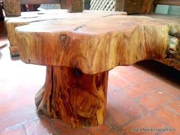 large tree stumps for best coffee tables tree stump for tree trunk large tree stumps