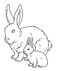 Disegni Da Colorare Animali Da Fattoria Disegni Per Bambini
