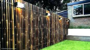 bamboo reed fencing bamboo decoration ideas bamboo fence roll bamboo decoration ideas reed fencing rolls bamboo yard screen bamboo screen bamboo