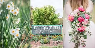 brookgreen garden details flowers wedding