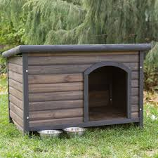 cool dog house plans ingenious ideas 7 amp tips awesome and houses inside cool dog houses