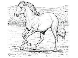 Horse Coloring Pages To Print Horse Coloring Pages Printable Unique