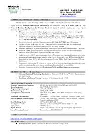 Ssis Resume Sample Free Resume Example And Writing Download