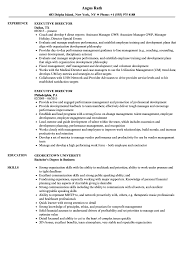 Executive Director Sample Resume Executive Director Resume Samples Velvet Jobs 19