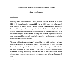 assessment and care planning for the adult in hospital this essay document image preview