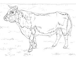 Small Picture Bulls coloring pages Free Coloring Pages