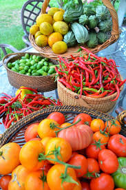 Kitchen Garden Foods 17 Best Images About Kitchen Garden On Pinterest Raised Beds