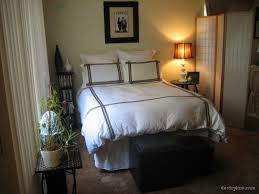 Catchy Apartment Bedroom Decorating Ideas with Apartment Bedroom
