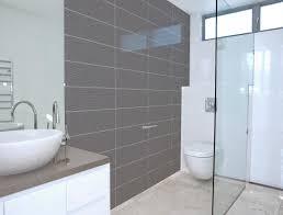 Splashback Instead Of Tiles For The Bathroom Splashbacks Ideas In - Bathroom splashback