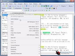 Portable EmEditor Professional 16.7 Free Download - Download Bull