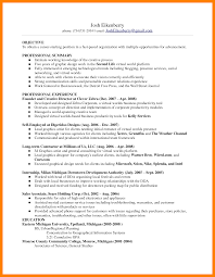 4 Skill Based Resume Sample Janitor Resume