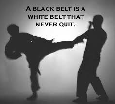 Martial Arts Quotes Cool Martial Arts Quotes Sayings Martial Arts Picture Quotes