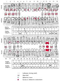 39 Detailed Dental Charting Practice Games