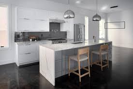Kitchen Design Atlanta Ga Glen Iris Atlanta Ga Kitchen Modern Regalatl Kitchens