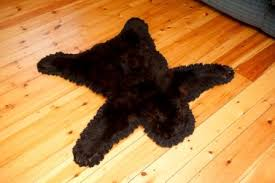 bear skin rug without head photo 6