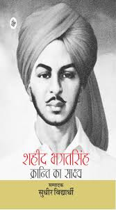 hindi essay on bhagat singh hindi essays websites hindi essay on bhagat singh cause effect bhagat singh screenshot