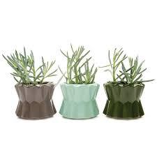 Unique Pots Without Drainage Holes | Planters Without Drainage | Chive -  Chive Products, LLC