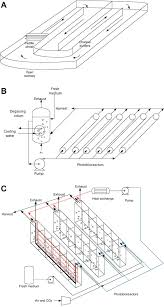 Design Of Raceway Ponds For Producing Microalgae Comparative Energy Life Cycle Analyses Of Microalgal Biomass