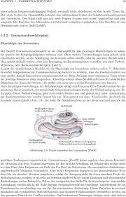 Untersuchung Der Arbeitsweise Verschiedener Hörgerätetypen