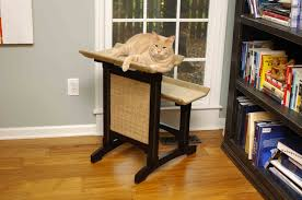 stylish cat furniture. Double Cat Seat Stylish Furniture R