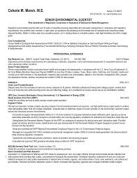 Awesome Resume Skills Summary Examples Skills Summary Resume Example