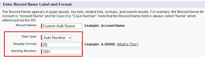 Business Requirement Example Two Factor Authentication For Community Salesforce