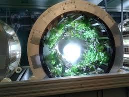 hydroponic herb garden. The Herb Garden: Close Up Of Hydroponics. Hydroponic Garden N