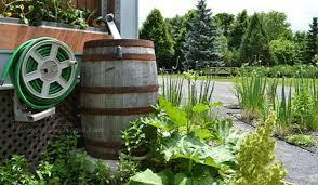 barrel garden. Rain Barrel Ramblings: Clever Ways To Water The Garden \u0026 Save, Raised Bed
